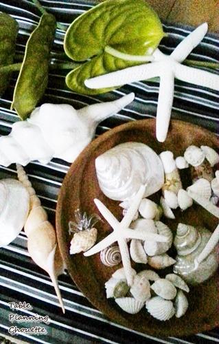 貝殻やアンセリウム