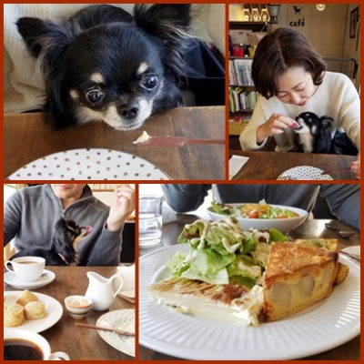 浦和のドックカフェ レインドックスでランチ
