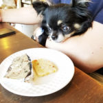浦和のRAIN DOGS CAFE(レインドッグスカフェ)