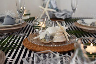 貝殻・ガラス